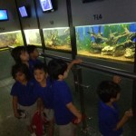 Trip-To-Acquarium-02